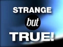 strange-but-true